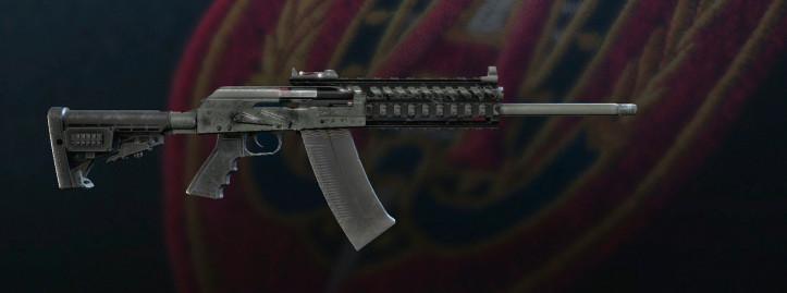 Tom Clancy's Rainbow Six Siege - SASG-12
