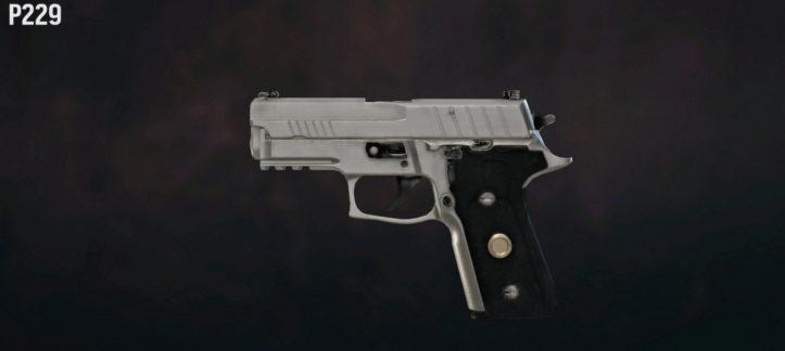 P229 (SIG-Sauer P229 Elite)
